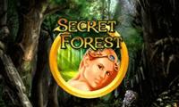 Автомат Секретный лес